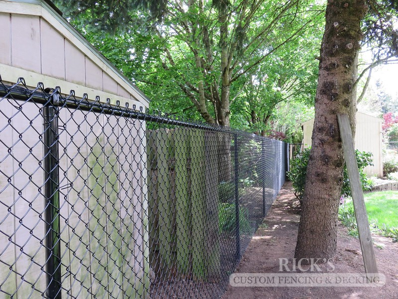 4120 - Black Chain Link Fencing