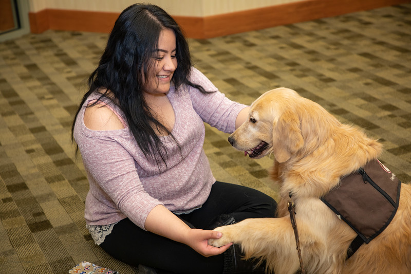 Therapy Dogs Sassy-7113.jpg