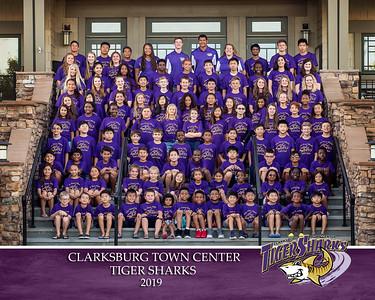 CTC Tiger Sharks 2019