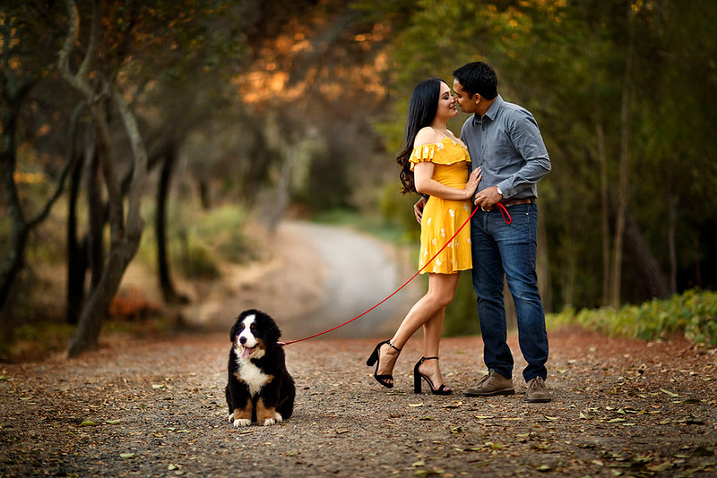 Sacramento family photographer during outdoor portrait session. Family portraits with a dog at Folsom Lake