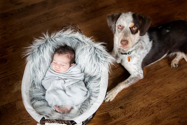 Lifestyle Newborn
