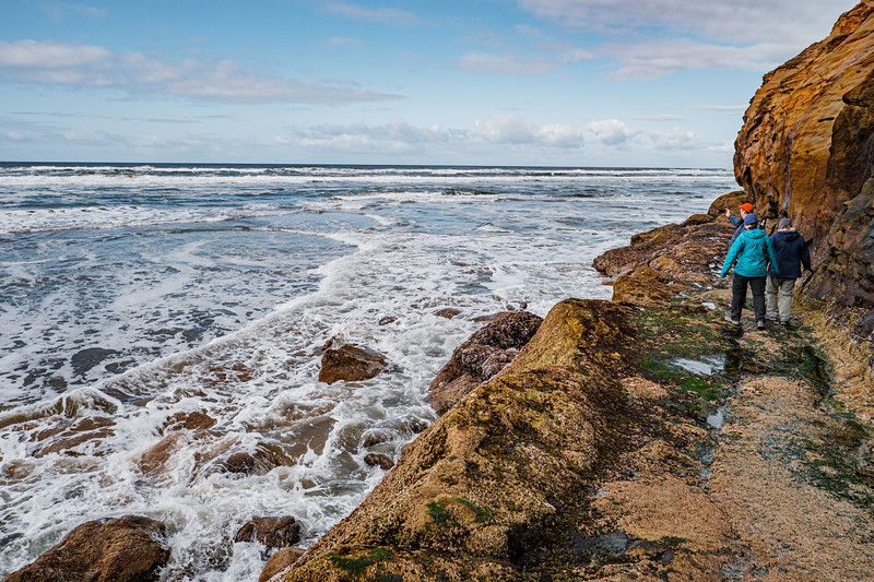 coast-pictures-by-mike-hall-35.jpg