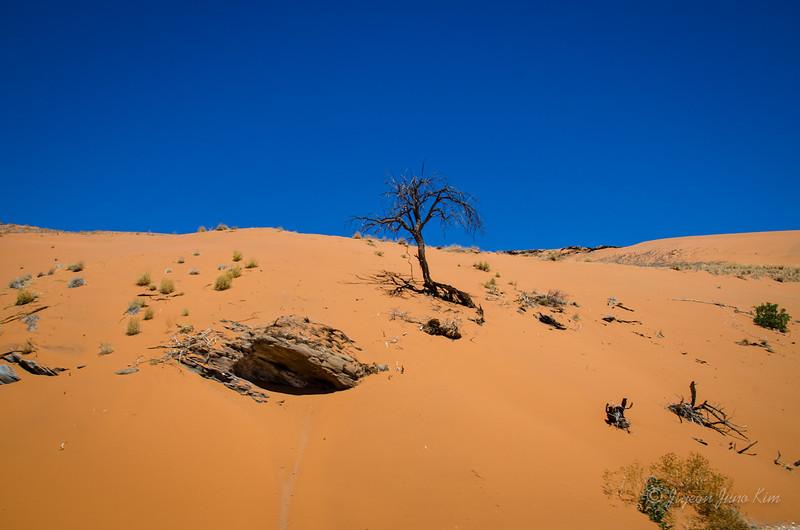 Namibia-4508.jpg
