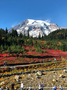 Mt Rainier and Mt Adams (09.28-29.18)