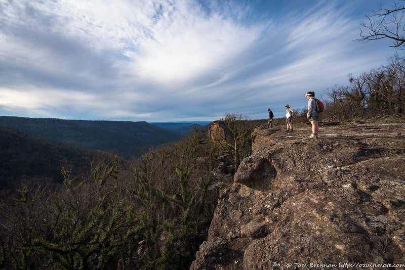 Afternoon on the tops east of Danjera Creek