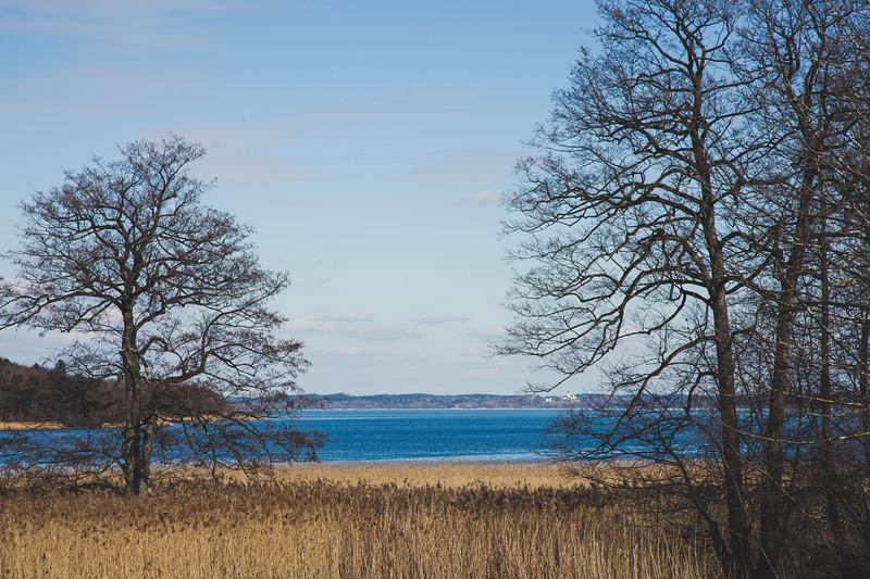 Lake. Chiemsee 2020