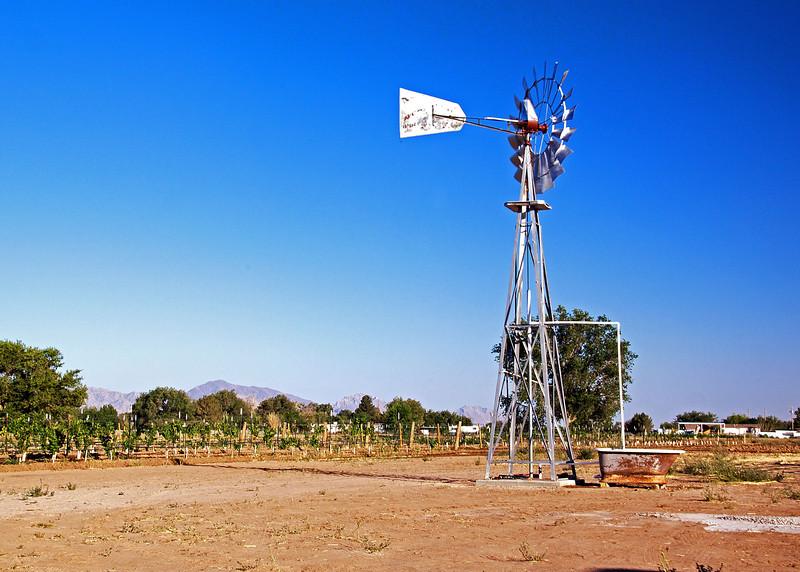 IMG_5557 windmill 2.jpg