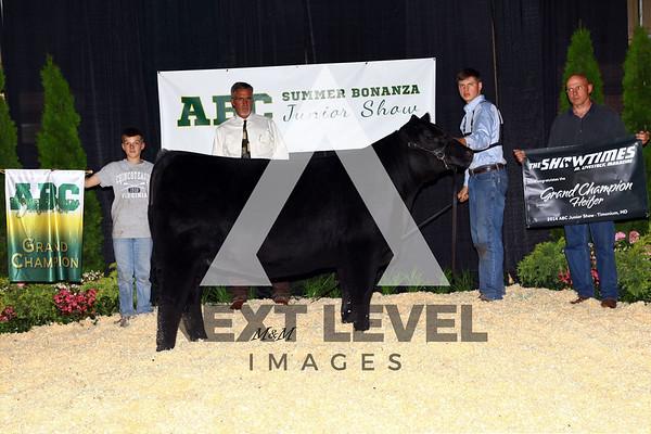 ABC Jackpot 2014 Heifer Backdrop