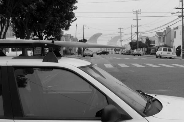 Surf Board Repair