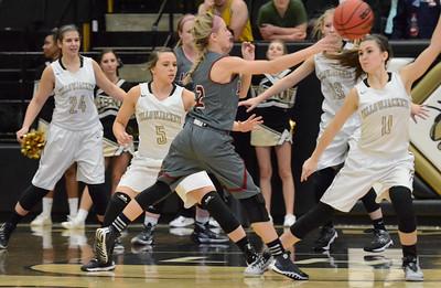 Basketball - LHS Girls 2015-16 - Joplin