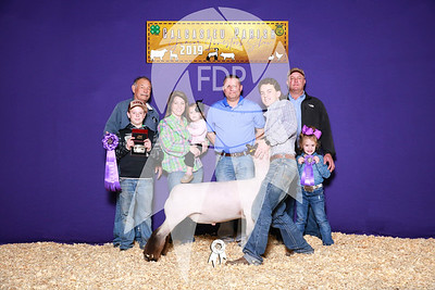 Calcasieu Parish Livestock Show