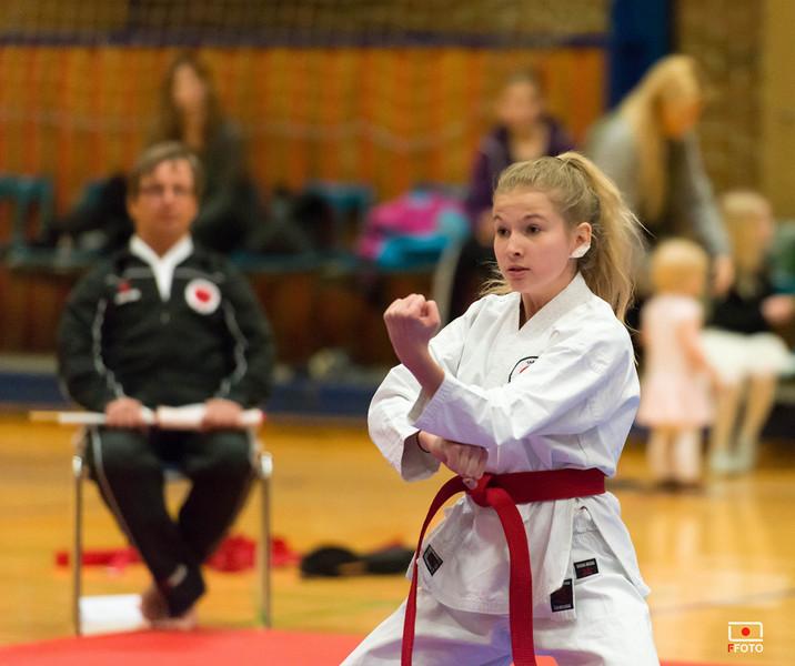 Taastrup karate klubmesterskab 2014 -DSC_3523.jpg