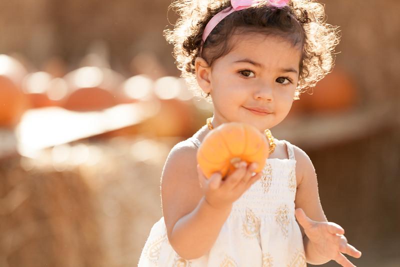 2014 Pumpkin Patch-4777.jpg