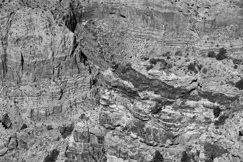 2017-03-21-Grand-Canyon-954.jpg