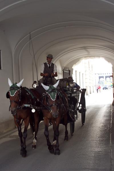 Vienna 2013-65.jpg