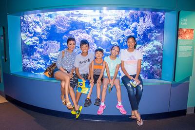 Aquarium of the Pacific:  August 16, 2016