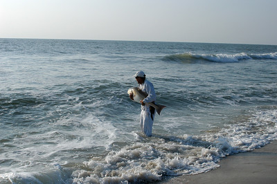 My second beach-caught Red drum taken by the late Steve Mumford RIP