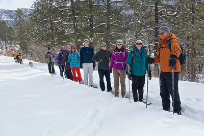 Turkey Creek Snowshoe