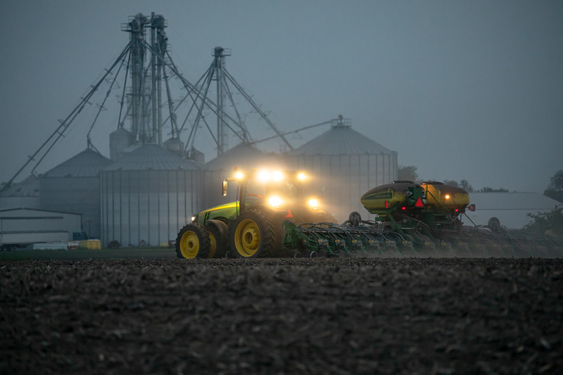 2019 Soybeans