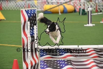 Dauphin Dog Training Club AKC Agility Trial April 14-16