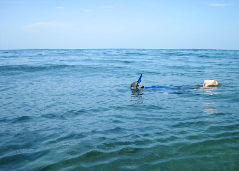 snorkeling-at-the-beach-1.jpg