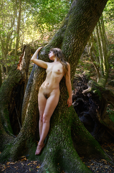 Forest Figures