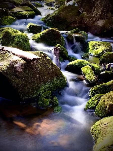 cascade photo.jpg