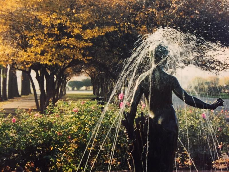 Grant Park Rose Garden, Chicago   c. Oct. 1999