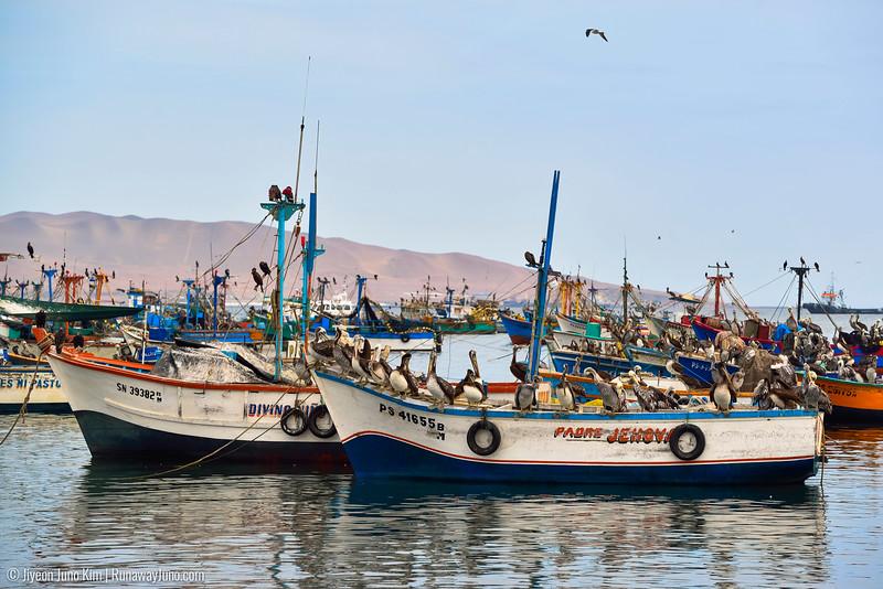 05.30_Paracas to Huacachina-4498.jpg