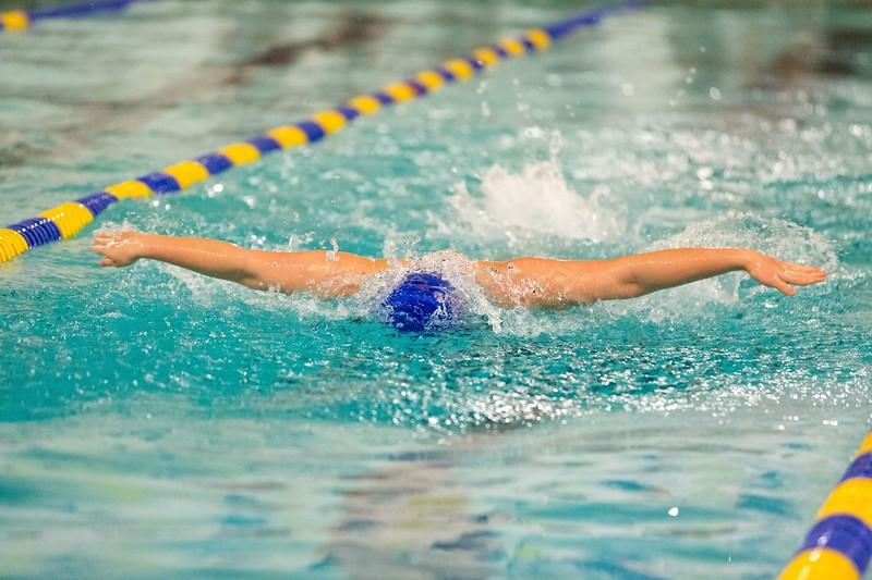 MMA-Swimming-2019-II-029.jpg
