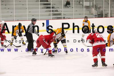 Boys Hockey vs Willmar