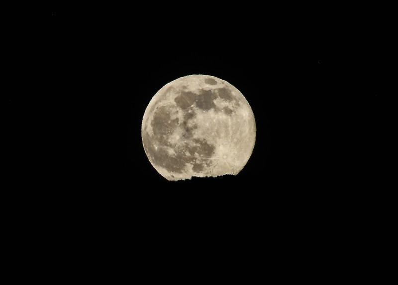 NEA_2793-7x5-Moonrise over Sacramento Mtns.jpg