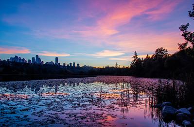 Deer Lake Pink