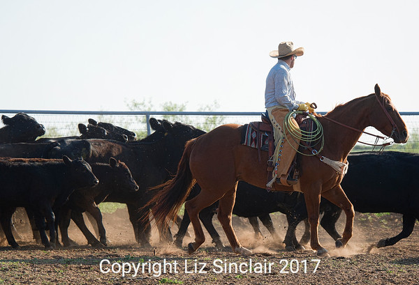 Gray Ranch  Branding