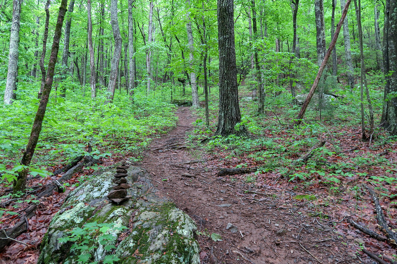Chestnut Cove Connector Path -- 2,720'