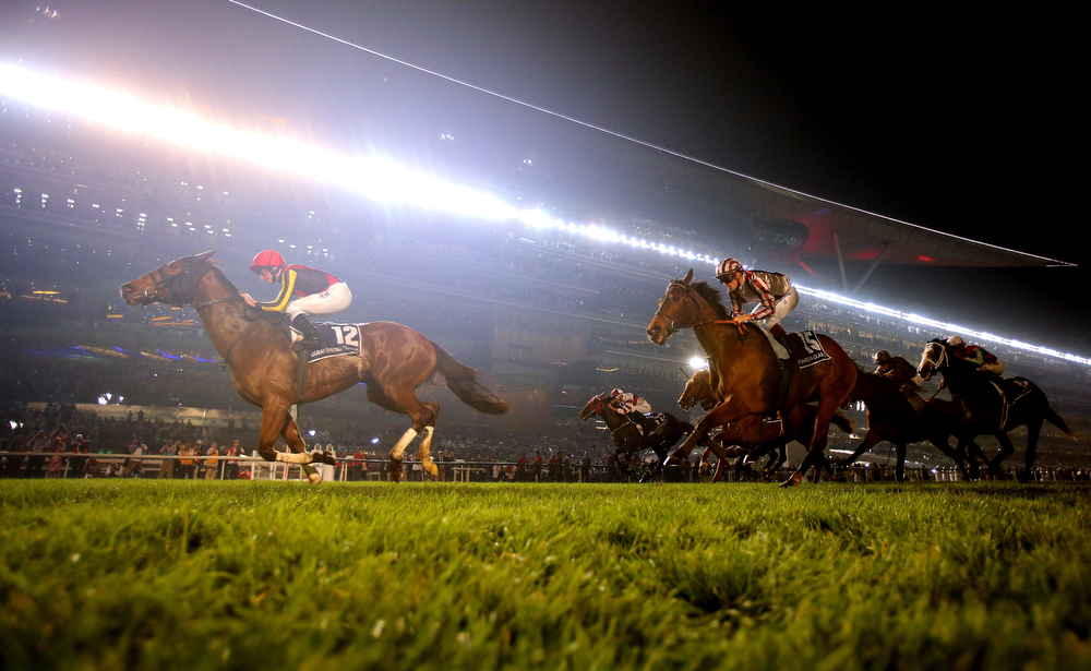 . Gentildonna riden by Ryan Moore wins the Dubai Sheema Classic during the Dubai World Cup at the Meydan Racecourse on March 29, 2014 in Dubai, United Arab Emirates.  (Photo by Warren Little/Getty Images)