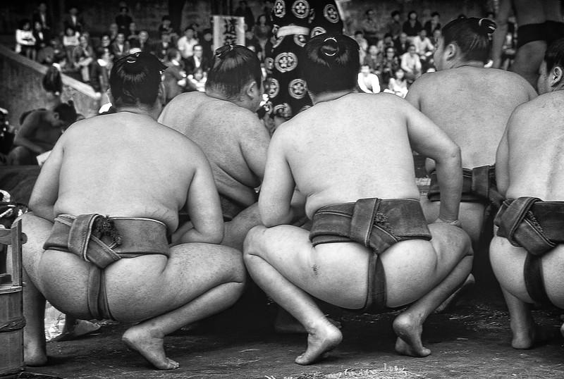 Sumo Festival_012.jpg