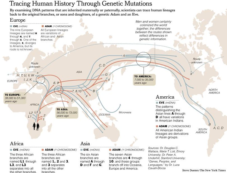 NYTmtDNA_Migrations-Map2.jpg