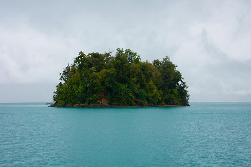 Island in Lake Todos los Santos, Patagonia, Chile