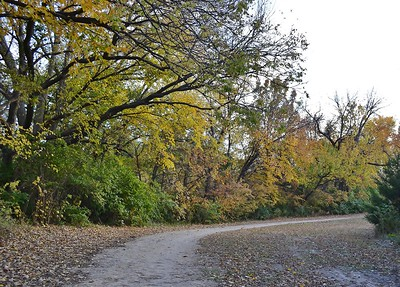 Linear Trail - October 2011