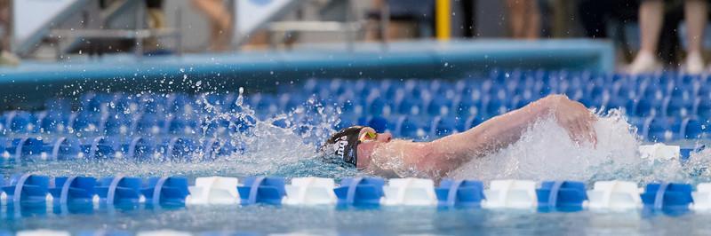 2018_KSMetz_Feb09_SHS Centenial League_Swimming_NIKON D5_1969.jpg