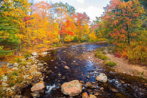 New England, Eastern Canada & Other Fall Color