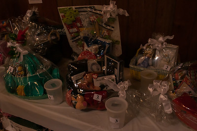 Basket Auction 2014