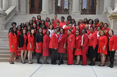 Delta Day at the MI State Capital 2016