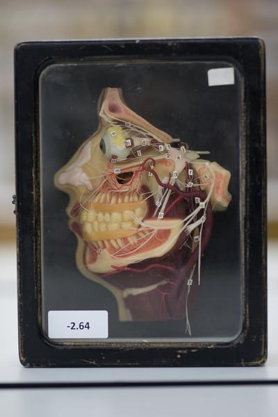 som-surgical-07-19-139.jpg