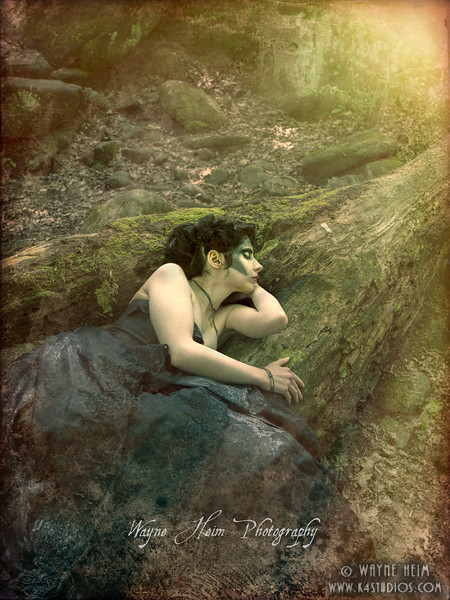 Sleeping in the Woods  Photography by Wayne Heim