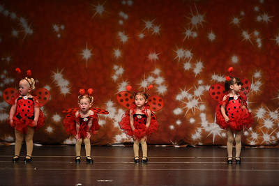 "Danville Twinkle Star ""Showtime""  Sunday, June 9th, 2pm"