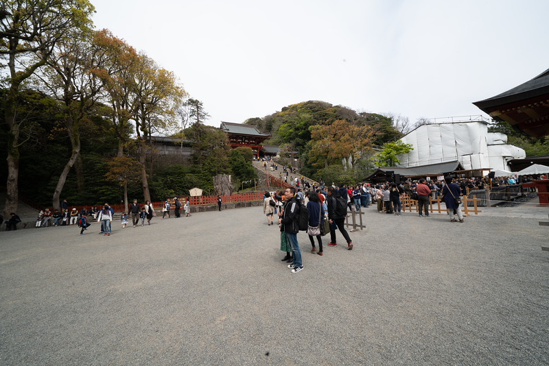 20190411-JapanTour-4250.jpg