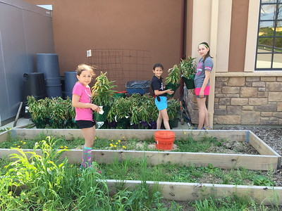 HOPE/JOY Gardening - May 9, 2015