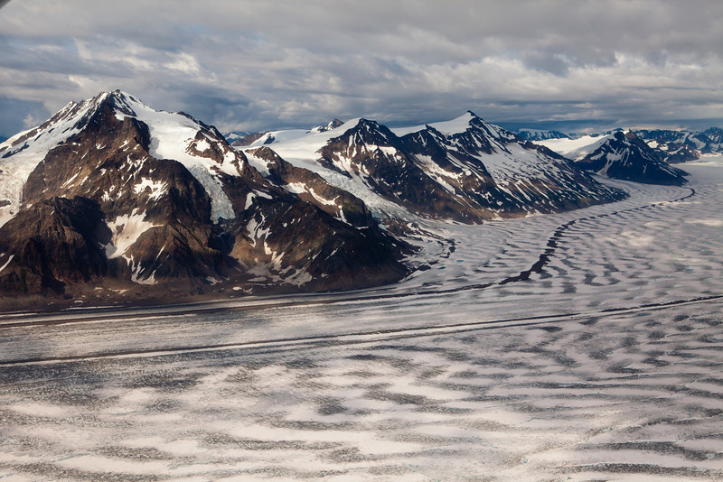 Alaska Icy Bay-4734.jpg